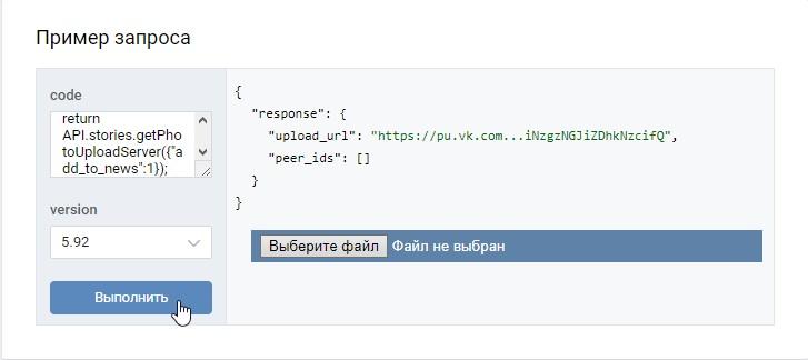 Выберите файл в окне Пример запроса в ВК