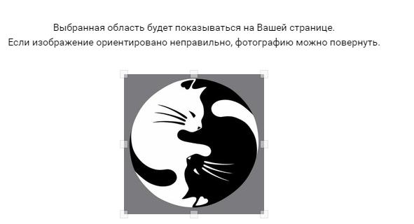 Выбираем область для отображения на аватарке ВК